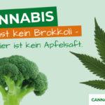 Über Cannabis aufklären, aber richtig!
