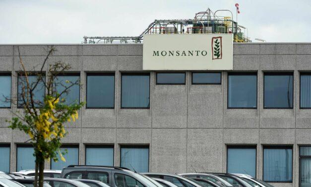 Bayer-Tochter: Französischer Landwirt gewinnt Streit gegen Monsanto