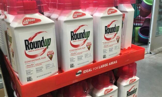 Bayer: Konzern scheitert vor Gericht – und steigt aus Verfahren um Glyphosat aus