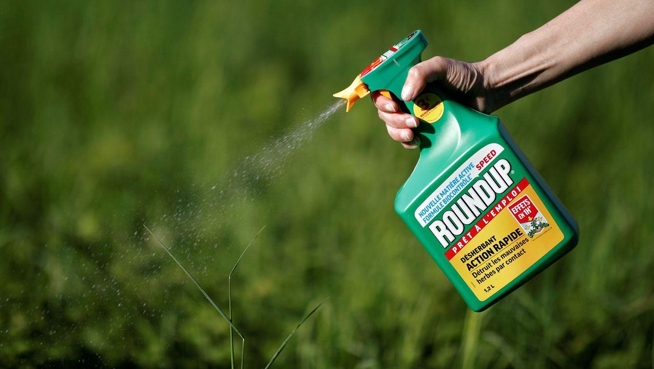 Krebs-Klage gegen Monsanto: Bayer steht Prozesswelle in USA bevor