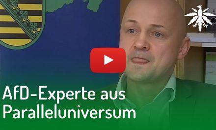 AfD-Experte aus Paralleluniversum | DHV-Video-News #195