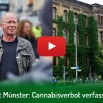 Amtsgericht Münster: Cannabisverbot verfassungswidrig | DHV-Video-News #300