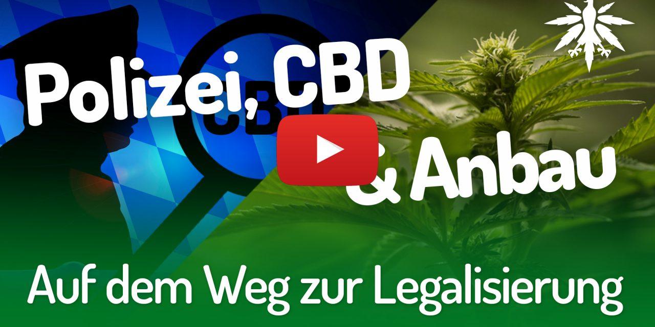 Auf dem Weg zur Legalisierung   DHV-Video-News #203