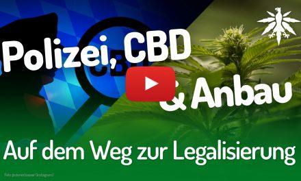 Auf dem Weg zur Legalisierung | DHV-Video-News #203