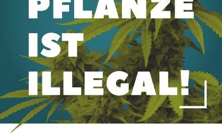 Aufruf zum Global Marijuana March 2019: Jetzt Demo anmelden!