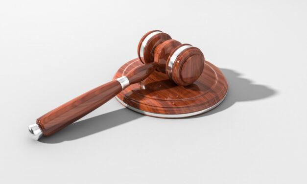 Bundesverfassungsgericht prüft weiteren Normenkontrollantrag | Deutscher Hanfverband
