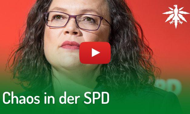 Chaos in der SPD | DHV-Video-News #191