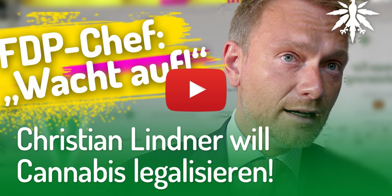 Christian Lindner will Cannabis legalisieren! (Video)