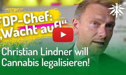 Christian Lindner will Cannabis legalisieren! (Video)