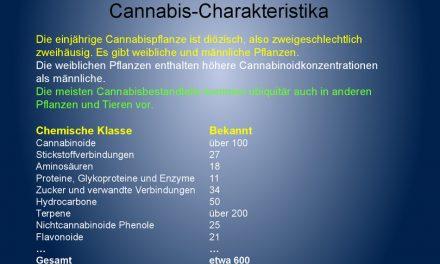 Inhaltsstoffen der Cannabispflanze – Alternative Drogenpolitik