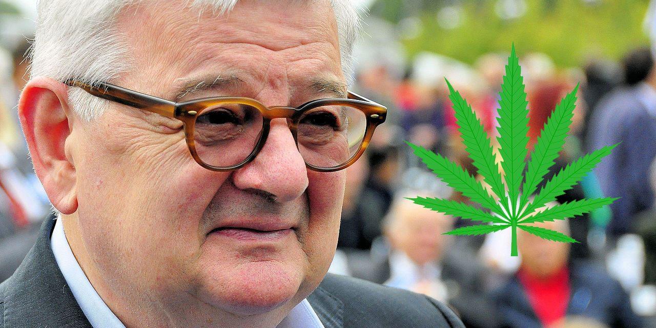 Ex-Vizekanzler Joschka Fischer steigt ins Cannabis-Geschäft ein — HANF.biz