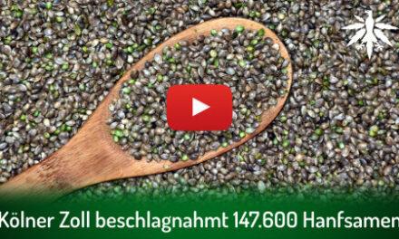 Kölner Zoll beschlagnahmt 147.600 Hanfsamen | DHV-Video-News #298