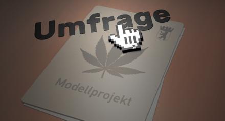 Konsumentenbefragung für Berliner Cannabis-Modellprojekt | Deutscher Hanfverband