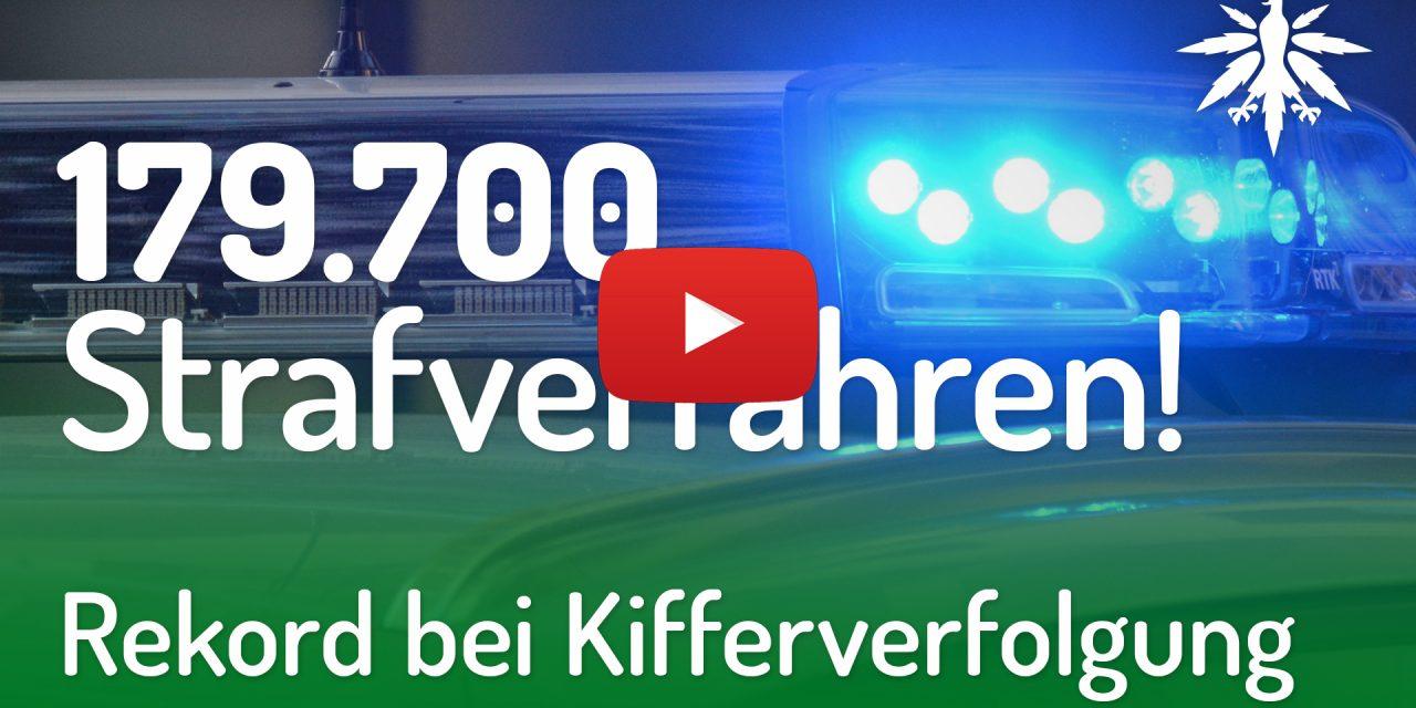 Rekord bei Kifferverfolgung   DHV-Video-News #201