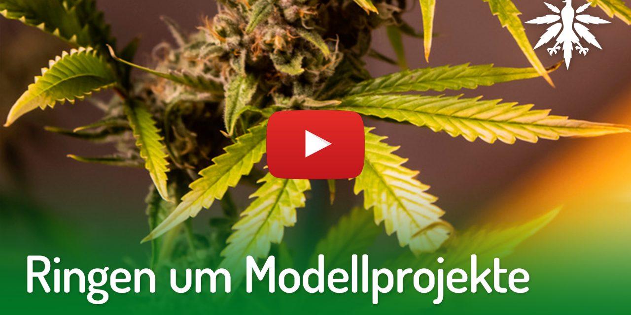 Ringen um Modellprojekte | DHV-Video-News #212