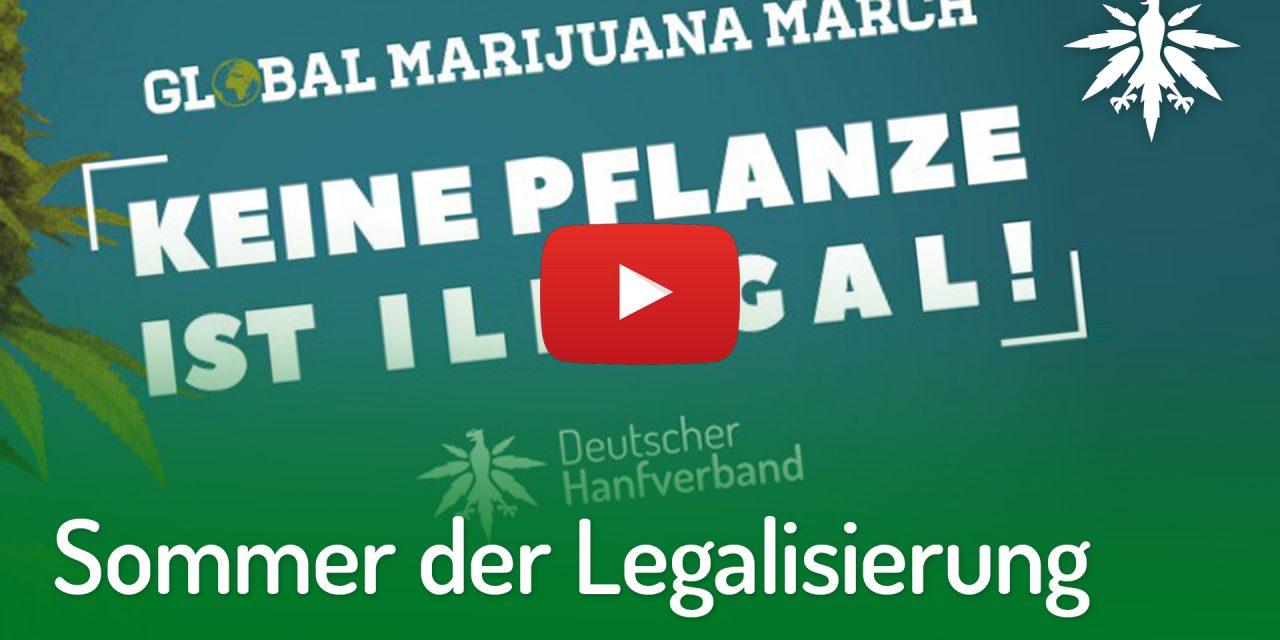 Sommer der Legalisierung: Smoke-In & Demo im Mai | DHV-Video-News #204