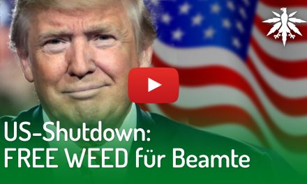US-Shutdown: Free Weed für Beamte | DHV-Video-News #193
