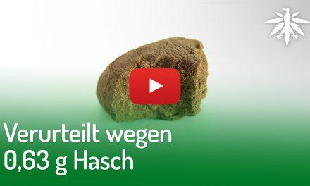 Verurteilt wegen 0,63 g Hasch | DHV-Video-News #202