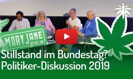 Video: Stillstand im Bundestag(?): Politiker-Diskussion auf der Mary Jane Berlin 2019