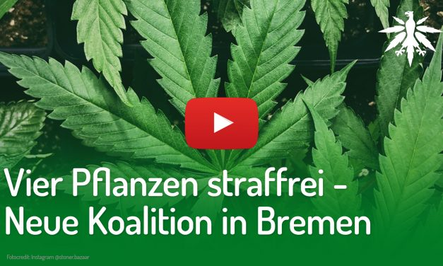 Vier Pflanzen straffrei – Neue Koalition in Bremen | DHV-Video-News #211
