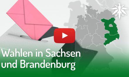 Wahlen in Sachsen und Brandenburg | DHV-Video-News #215