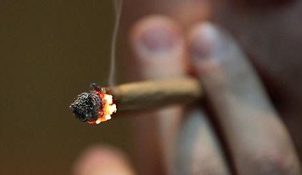 Regierung will Jugendliche vom Cannabiskonsum fernhalten