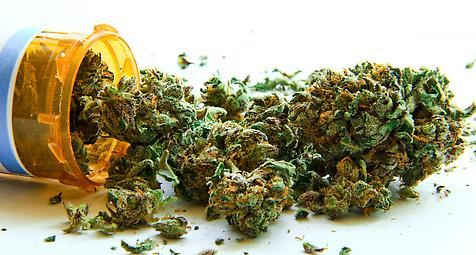 Verordnung von Medizinalcannabis: FDP will Genehmigungspflicht der…
