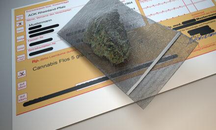 Nachbesserungen bei Cannabis als Medizin gefordert