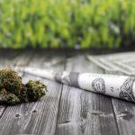 Zahlen zu den aktuellen Steuereinnahmen aus Cannabisgeschäften liegen vor — HANF.biz