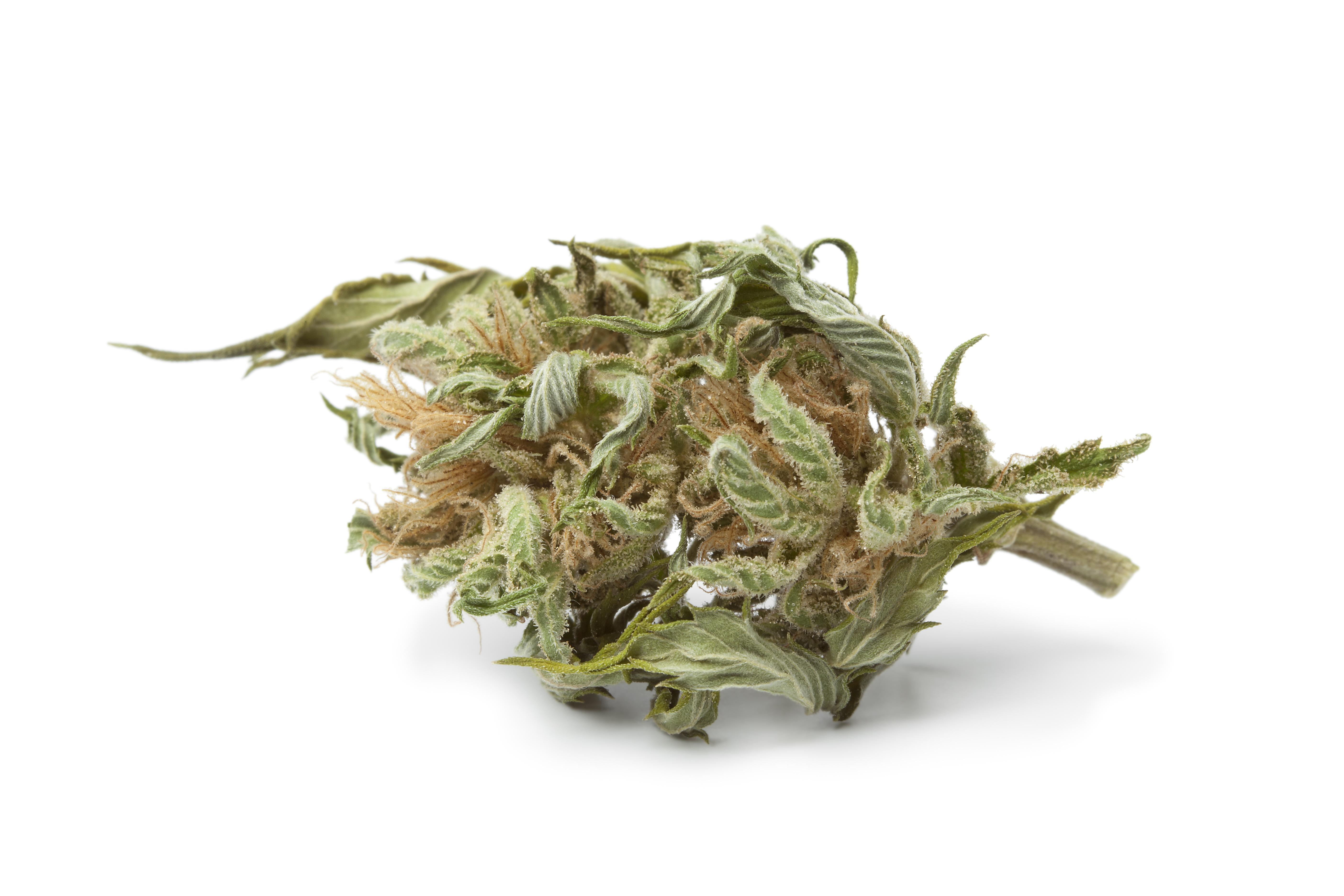Ist CBD-Cannabis jetzt legal oder nicht?
