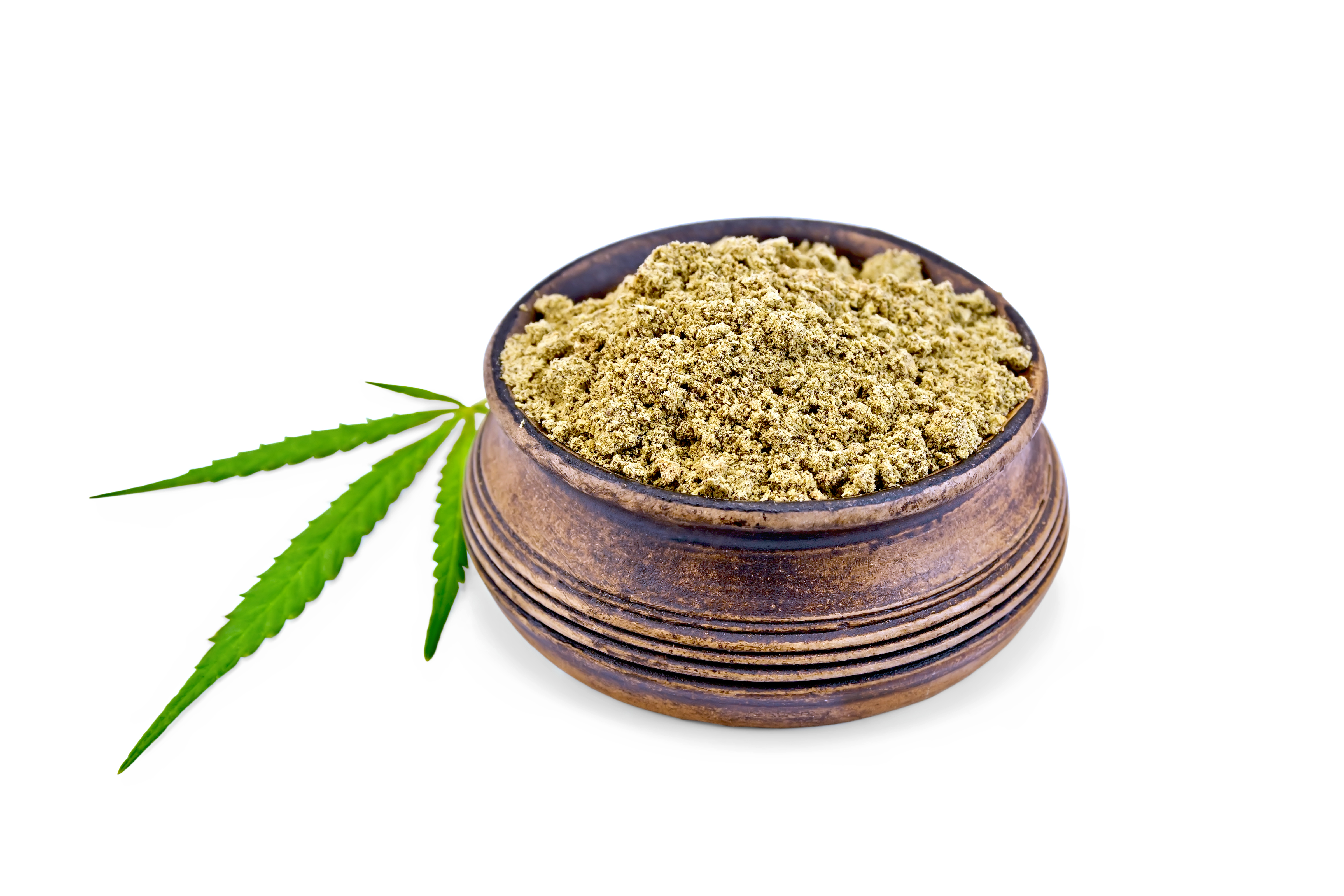 """Cannabis als Medizin beim """"Sonntags – Stammtisch"""""""