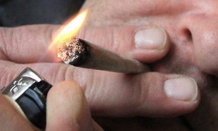 Cannabisrauchen in Maßen könnte sich auf Spermien auswirken