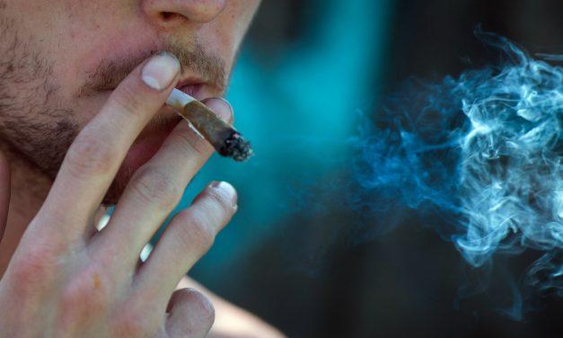 Gen des Nikotinrezeptors schützt vor Cannabisabhängigkeit