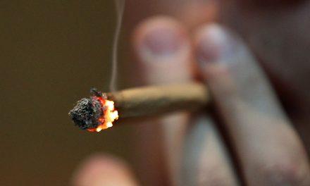Luxemburg bereitet Legalisierung von Cannabis vor
