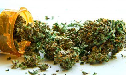 Immer mehr Schwerkranke in Deutschland bekommen Cannabis auf Rezept