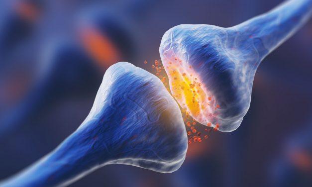 Körpereigene Cannabinoide machen Frau schmerzlos,…