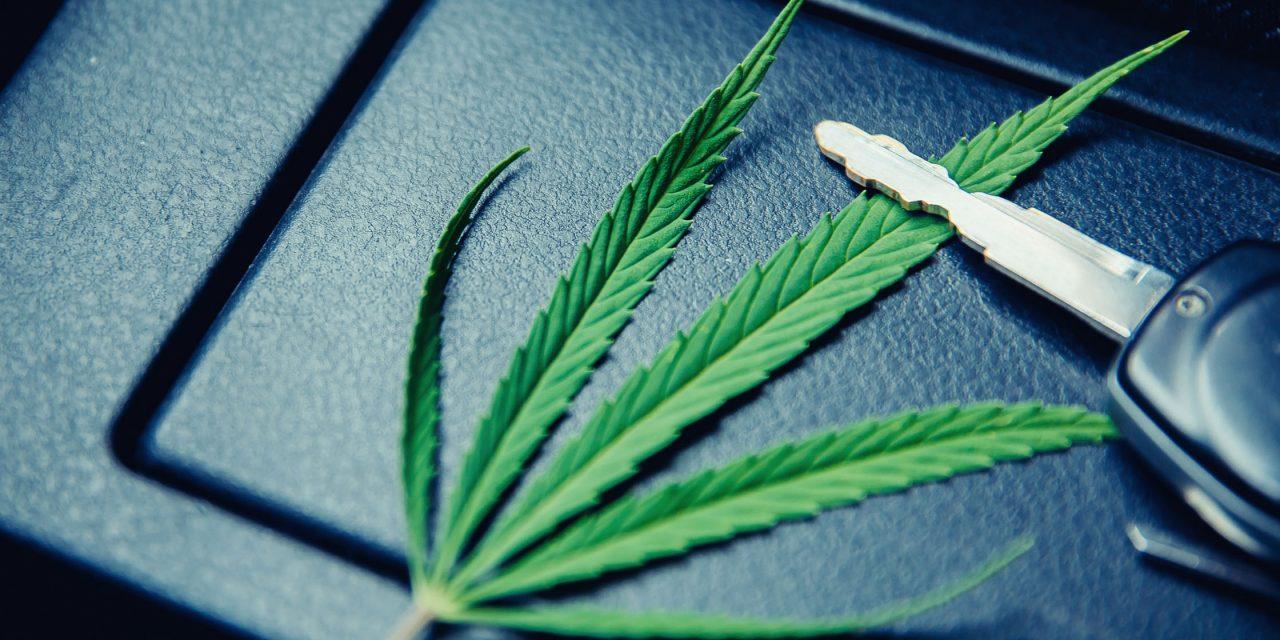 Cannabispatienten dürfen laut Urteil unter Umständen Auto fahren