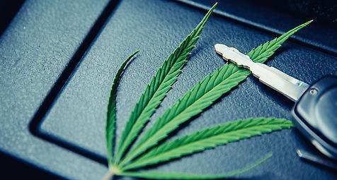 Führt die Legalisierung von Cannabis zu mehr Verkehrsunfällen?