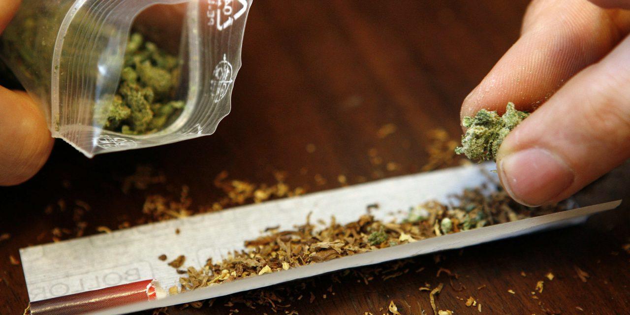 Neuseeland entscheidet per Volksabstimmung über Freigabe von Cannabis