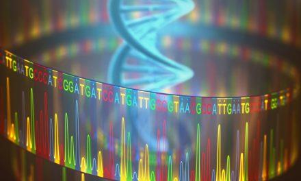Genomanalyse von Metastasen kann effektive Therapie anzeigen