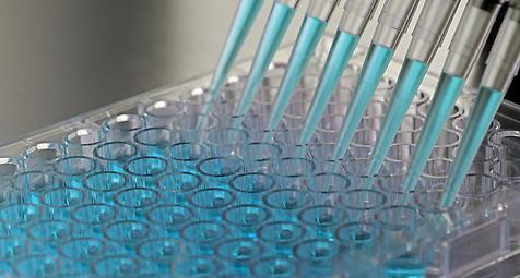 Neues Zentrum für personalisierte Krebsimmuntherapie in Mainz