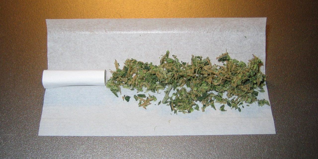Cannabis & Psychosen – Wie zuverlässig ist die Lancet-Datengrundlage?