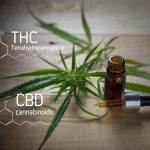 What Is Driving The Suddenly Increasing Popularity of CBD