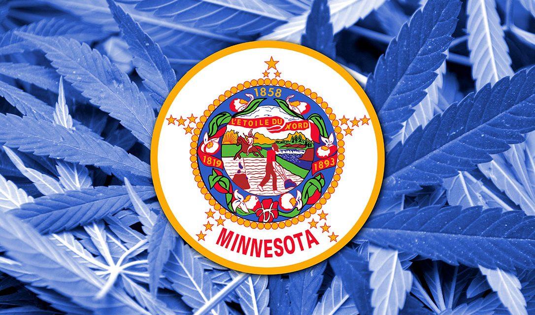 Minnesota Grants Medical Cannabis Access For Chronic Pain