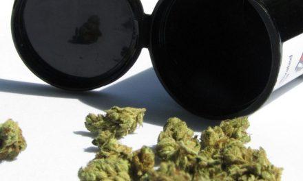 Cannabis – Was passiert im Gehirn?