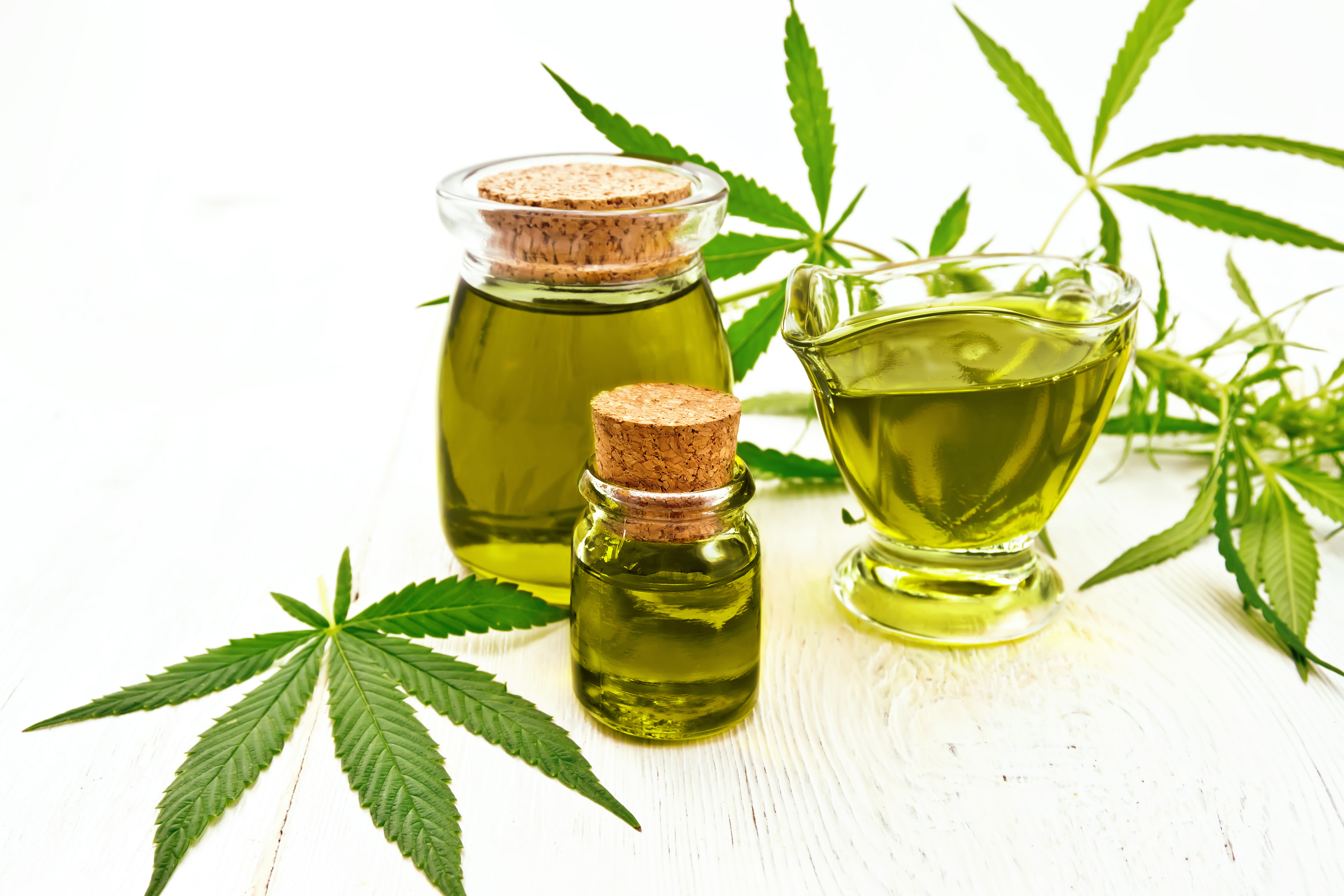 Cannabis CBD Oil