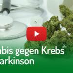 Cannabis gegen Krebs und Parkinson | DHV-Video-News #265