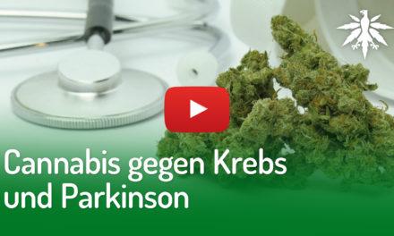 Cannabis gegen Krebs und Parkinson | DHV-News #265