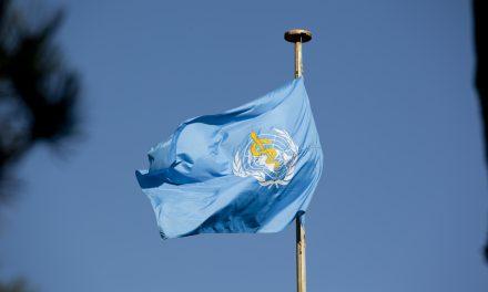 Weltgesundheitsorganisation empfiehlt Neuklassifizierung von Cannabis